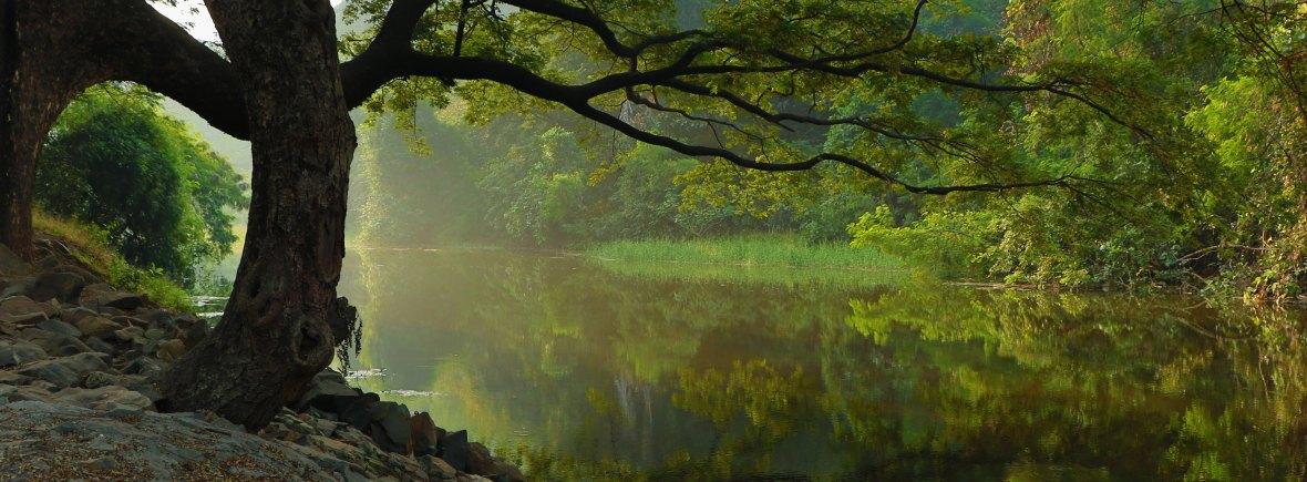 Atelier de méditation et relaxation - Pays Basque et Landes - Psychologue bien-être